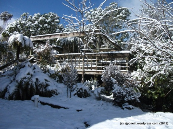 Raurimu snow 088