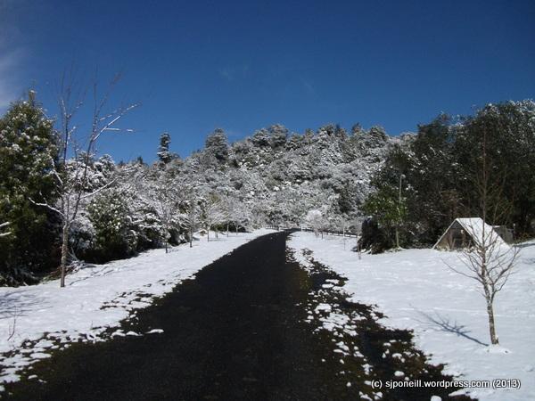 Raurimu snow 087