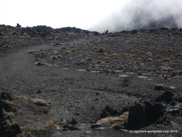 Mt Ngauruhoe Summit climb April 2016 -026